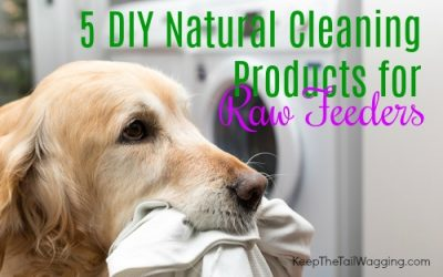 5 DIY Natural Cleaning Products for Raw Feeders